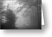 The Way Forward Greeting Cards - Foggy Forest Greeting Card by Yago Veith
