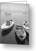 Ma Greeting Cards - Foggy morning in Cape Cod Black and White Greeting Card by Matt Suess