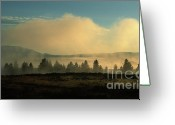 Foggy Morning Greeting Cards - Foggy Morning in Yellowstone Greeting Card by Sandra Bronstein