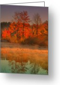 Water Scenes Greeting Cards - Foggy On Orange Greeting Card by Emily Stauring