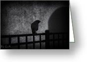 Black And White Animal Greeting Cards - Follow Greeting Card by Bob Orsillo