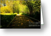Shady Greeting Cards - Follow the Path Greeting Card by Cheryl Young