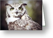 Abstract   Framed Prints Greeting Cards - Followed Owl Greeting Card by Jerry Cordeiro