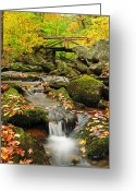 New England Autumn Greeting Cards - Foot Bridge- Macedonia Brook State Park Greeting Card by Thomas Schoeller