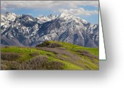 Snow Capped Photo Greeting Cards - Foothills Above Salt Lake City Greeting Card by Utah Images