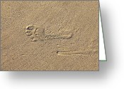 Footprint Greeting Cards - Footprints in the Sand Greeting Card by Joana Kruse