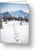 Snowcapped Greeting Cards - Footprints Leads To Frosty Mountain Greeting Card by Christopher Kimmel