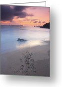 Footprint Greeting Cards - Footprints On Beach At Sunset Greeting Card by Oscar Gonzalez