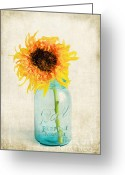 Mason Jar Greeting Cards - For my Friend Greeting Card by Darren Fisher
