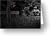 Photographer Greeting Cards Prints Greeting Cards - For Pa  Greeting Card by Jerry Cordeiro