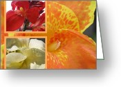 Canna Greeting Cards - For the Love of a Canna Greeting Card by Sandi Floyd