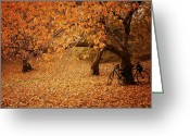 Nyc Greeting Cards - For Two - Autumn - Central Park Greeting Card by Vivienne Gucwa