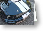 Carroll Shelby Photo Greeting Cards - Ford Shelby GT Nose Study Greeting Card by Samuel Sheats