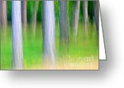 Rait Greeting Cards - Forest abstract Greeting Card by Odon Czintos