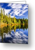 Reflecting Greeting Cards - Forest and sky reflecting in lake Greeting Card by Elena Elisseeva
