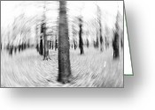 Modern Framed Prints Greeting Cards - Forest For The Trees - Black and White Nature Photograph Greeting Card by Artecco Fine Art Photography - Photograph by Nadja Drieling