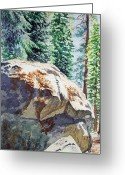 National Painting Greeting Cards - Forest Greeting Card by Irina Sztukowski