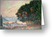French Landscape Greeting Cards - Forest near St Tropez Greeting Card by Paul Signac