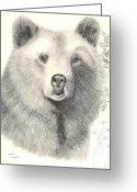 Pacific Drawings Greeting Cards - Forest Sentry Greeting Card by Joette Snyder