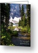 Summer In The High Country Greeting Cards - Forest View To Mountain Lake Greeting Card by Greg Hammond