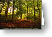 Ym_art Greeting Cards - Forest wilderness Greeting Card by Yvon -aka- Yanieck  Mariani