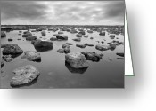 Seaview Greeting Cards - Forever Rocks Greeting Card by Svetlana Sewell