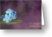 "\""blue Flowers\\\"" Greeting Cards - Forget Me Not 02 - s0304bt02b Greeting Card by Variance Collections"
