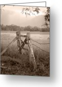 Fence Gate Greeting Cards - Forgotten Fields 2 Greeting Card by Holly Kempe