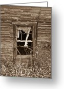 Homesickness Greeting Cards - Forlorn Window Greeting Card by Douglas Barnett
