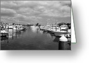 Cabbage Palm Trees Greeting Cards - Fort Pierce City Marina BW Greeting Card by Lynda Dawson-Youngclaus