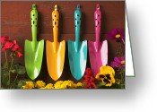 Hang Greeting Cards - Four colored trowels  Greeting Card by Garry Gay