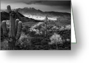 Black Mesa Greeting Cards - Four Peaks AZ Sunset Greeting Card by Dave Dilli