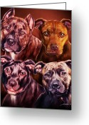 Bull Terrier Greeting Cards - Four Pit Bulls Greeting Card by Michael Spano