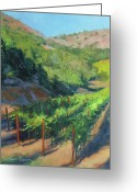 Grapevine  Greeting Cards - Four Rows Napa Valley Greeting Card by Anna Bain