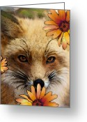 Sly Greeting Cards - Fox Art - Flower Girl Greeting Card by Sharon Cummings