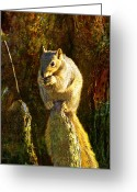 Cypress Digital Art Greeting Cards - Fox Squirrel Sitting On Cypress Knee Greeting Card by J Larry Walker