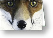 Vulpes Greeting Cards - Foxy Lady Greeting Card by Brent Ander