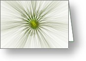 Defence Greeting Cards - Fractal Defence Greeting Card by Stefan Kuhn