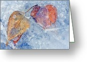 Bubbles Greeting Cards - Fractured Seasons Greeting Card by Mike  Dawson