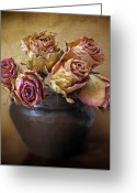 Rose Petals Greeting Cards - Fragile Rose Greeting Card by Jessica Jenney