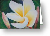 Red Leaves Pastels Greeting Cards - Frangipani after rain Greeting Card by Loueen Morrison