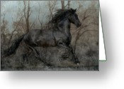 Stallion Greeting Cards - Free II Greeting Card by Jean Hildebrant