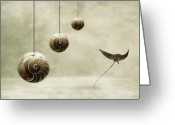 Shells Digital Art Greeting Cards - Free Greeting Card by Photodream Art