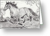 Livestock Drawings Greeting Cards - Free Run Greeting Card by Dana Lysons