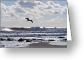 Jersey Shore Greeting Cards - Free Spirit Greeting Card by Joe  Burns