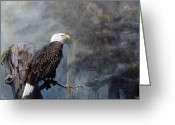 Eagle Art Greeting Cards - Freedom Haze Greeting Card by Steve Goad