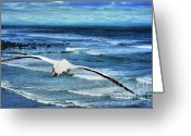 Beach Photographs Greeting Cards - Freedom Greeting Card by Mars Lasar