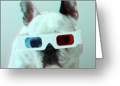 Animal Head Greeting Cards - French Bulldog With 3d Glasses Greeting Card by Retales Botijero