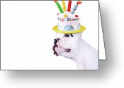 Birthday Greeting Cards - French Bulldog With Birthday Cake Greeting Card by Maika 777