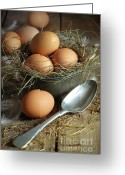 Eat Greeting Cards - Fresh brown eggs in old tin container with spoon  Greeting Card by Sandra Cunningham